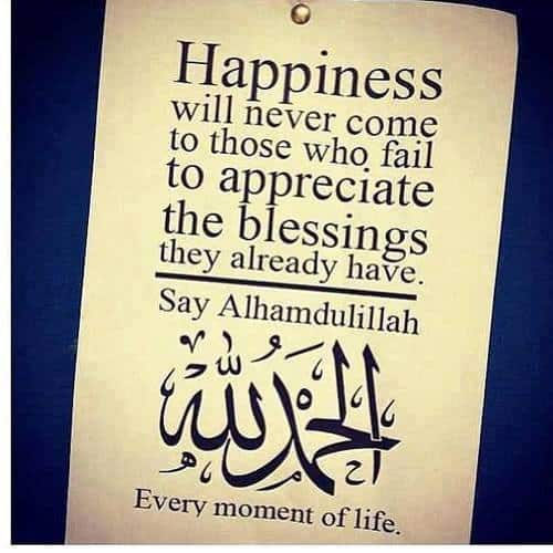 Quran Quotes About Life And If you woul...