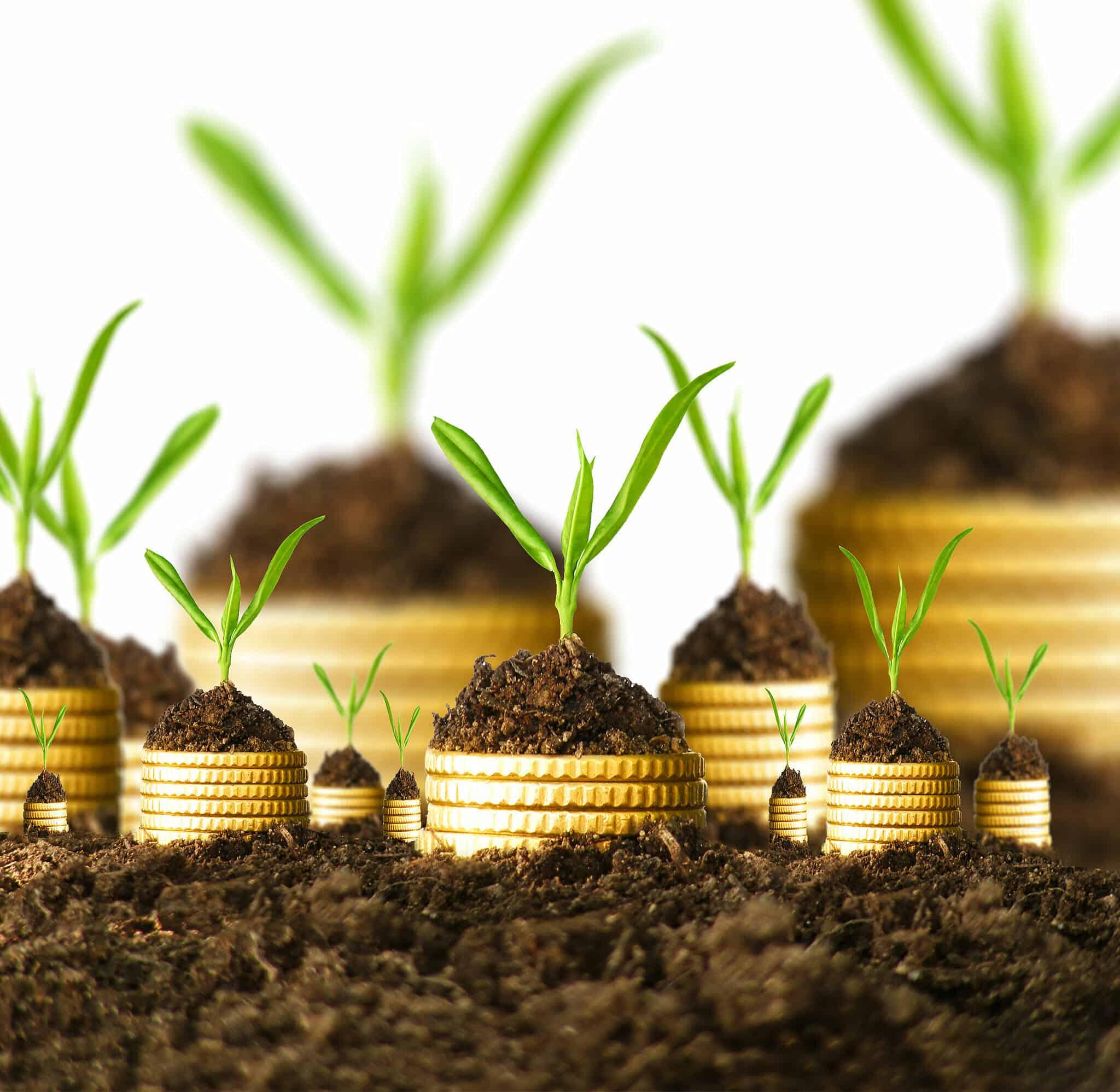duas_to_increase_income
